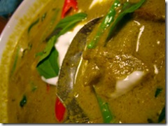 JustThai-GreenCurryChicken0002